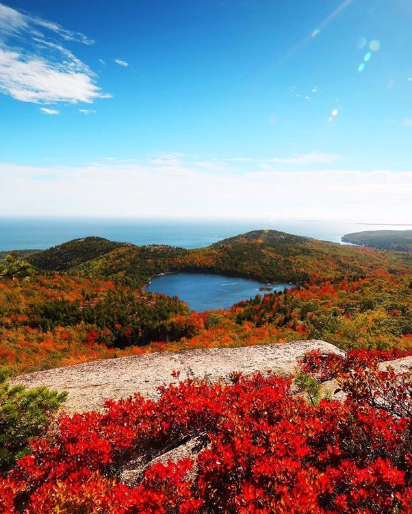 Maine Woods in Autumn